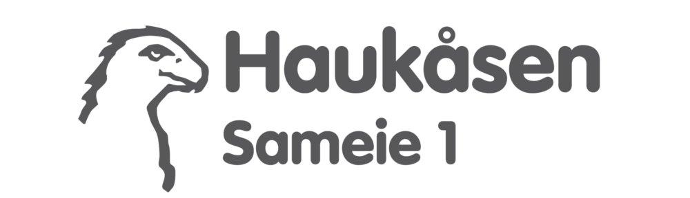 Haukåsen Sameie 1